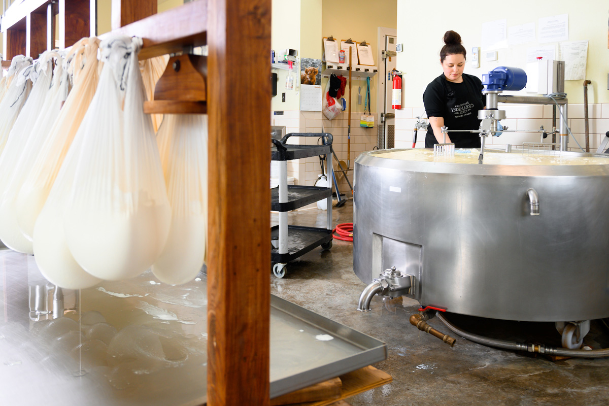 Woman stirs milk in large vat.
